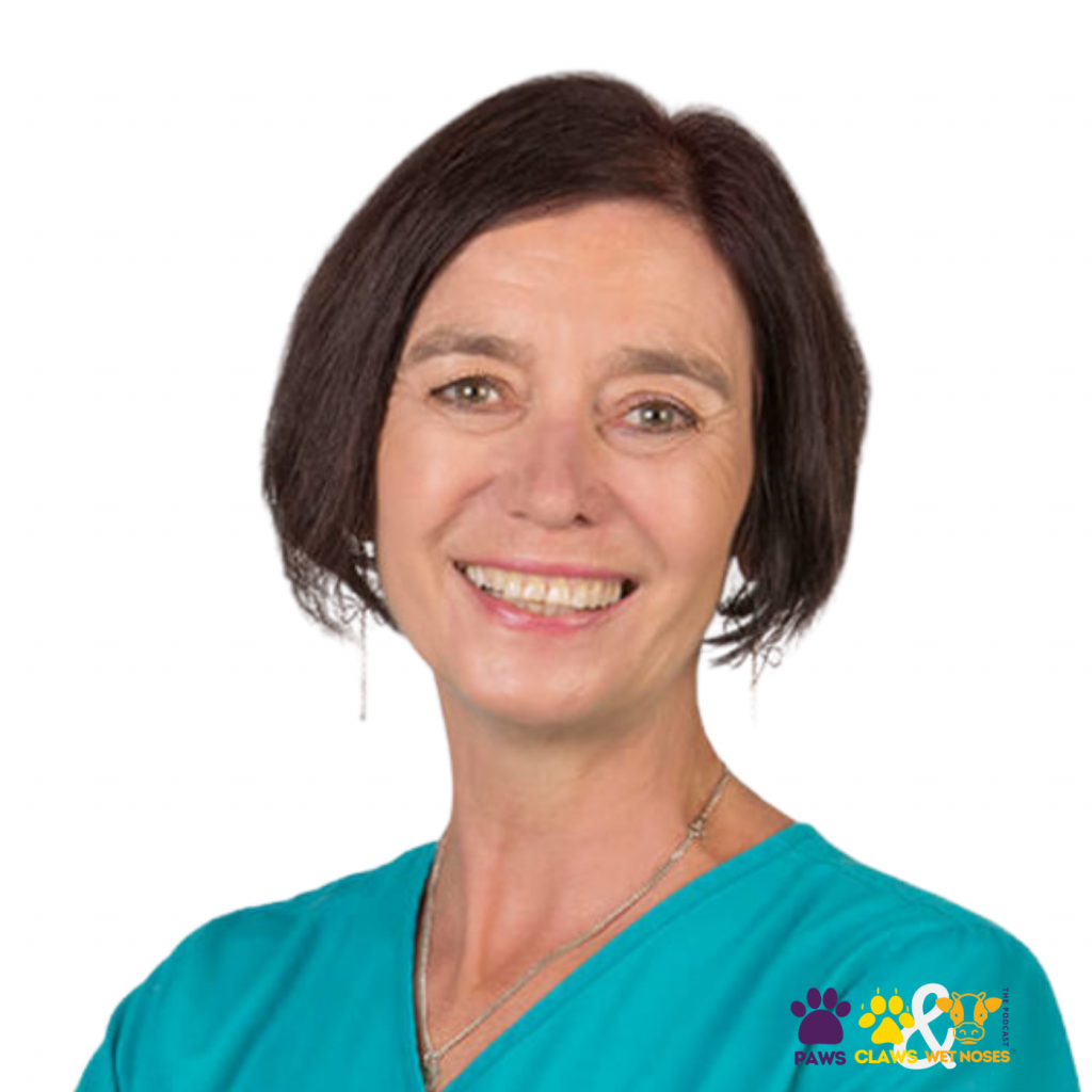Vet Clinic Sustainability - Dr Rose Unsworth