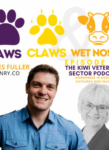 Julie South chats with James Fuller of Hnry