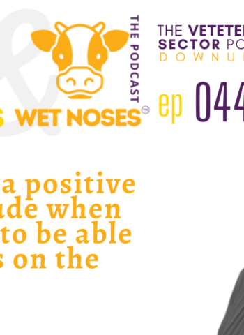 vets, vet nurses, vet techs - how to have a positive mental attitude during covid-lockdown with Julie South - episode 44 - vet podcast