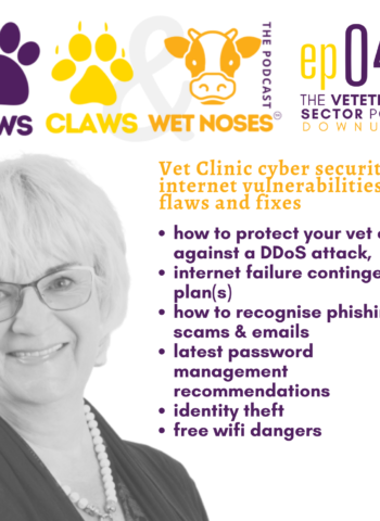 Vet Clinic cyber security and internet vulnerabilities, flaws and fixes